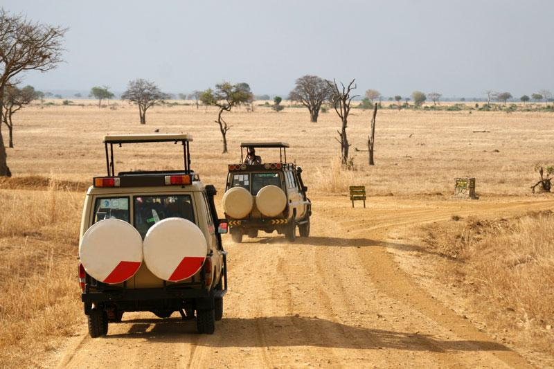 Travel to Tanzania
